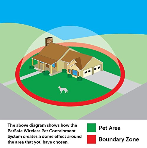 Wireless-Dog-Fences-Set-Up-Boundaries