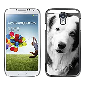 Vortex Accessory Carcasa Protectora Para SAMSUNG GALAXY S4 IV i9500 - Border Collie Black Dog Breed White -