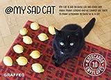 My Sad Cat Notecards