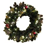 Bethlehem Lighting GKI 24-Inch Canterbury Christmas Christmas Wreath with 50 Clear Mini