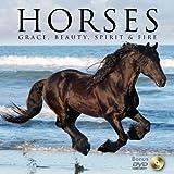 Horses W/DVD, Willow Creek Press, 1607554844
