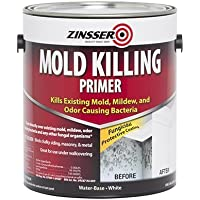 GAL Mold Killing Primer (Pack of 2) by RUST-OLEUM CORP/ZINSSER