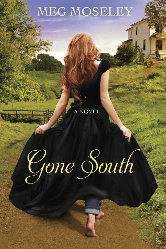 Gone South: A Novel cover