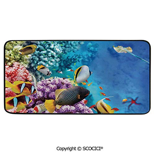 (Rectangle Rugs for Bedside Fall Safety, Picnic, Art Project, Play Time, Crafts, Large Protective Mat, Thick Carpet,Ocean,Clear Underwater Corals and Tropical Fishes and Stingray,39