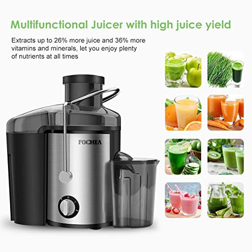 Buy juicer for kale