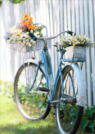 Bike With Flowers Blank Card