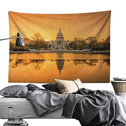 Maureen Austin Art Tapestry,United States,Washington DC American Capital City White House Above The Lake Landscape, Apricot Ginger Wall Hanging for Dorm Living Room Bedroom70 x90 (Best Jazz Clubs In Washington Dc)