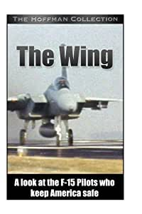 F15 Fighter Pilots: The Wing