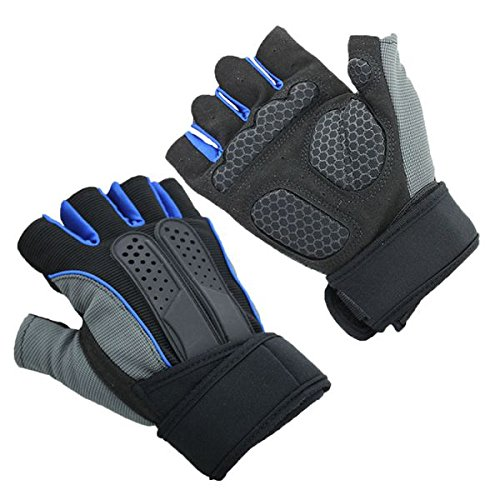 Wincom Dishman Motorcycle Gloves Half Finger Gloves for Fitness Dumbbel Training Riding Lengthened Wrist Lifting Exercise - (Size: XL, Color: Blue)