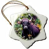 3dRose Danita Delimont - Cattle - India. Gaur, Indian wild bison at Kanha tiger reserve. - 3 inch Snowflake Porcelain Ornament (orn_276813_1)