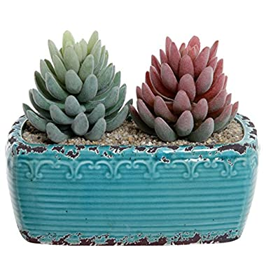 Rustic Vintage Style Turquoise Fleur De Lis Design Ceramic Plant Pot / Centerpiece Decor Planter - MyGift