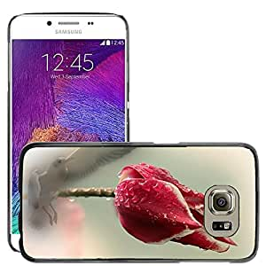 Super Stella Slim PC Hard Case Cover Skin Armor Shell Protection // M00106044 Flower Plant Bird Tulip Nature // Samsung Galaxy S6 (Not Fits S6 EDGE)