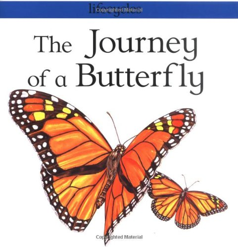 The Journey of a Butterfly (Lifecycles) PDF
