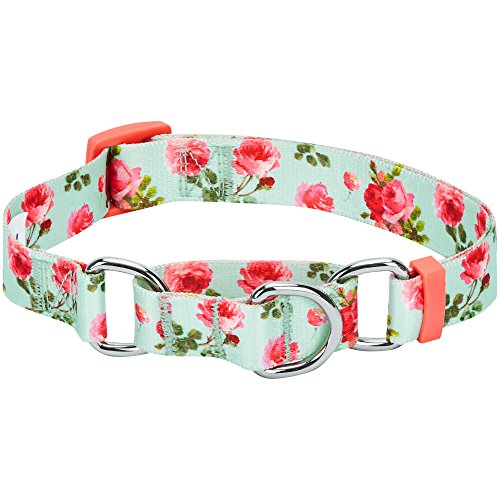 - Blueberry Pet 7 Patterns Spring Scent Inspired Rose Print Safety Training Martingale Dog Collar, Turquoise, Medium, Heavy Duty Adjustable Collars for Dogs