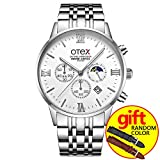 Stainless Steel Business Men's Watch Classic Multifunction Chronograph Luminous Daylight Quartz Watch, Simple Fashion Men's Business Watch (Silver white)