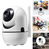Software : Purcon 1080P Wireless Monitor Camera Night Vision WiFi Phone Remote Two-Way Voice Home Security Camera for Home, Office, Shop, Elder, Baby, Pet