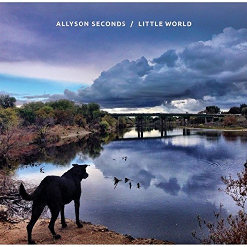 Allyson Seconds
