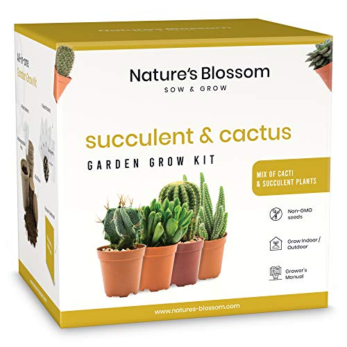 Nature's Blossom Succulents and Cacti Seed Starter Kit for Beginner Gardeners. Gardening Set with Organic Cactus and Succulent Seeds for Planting Indoors
