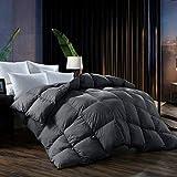 Best Goose Down Comforters - L LOVSOUL Queen Comforter,Goose Down Comforter All Season Review