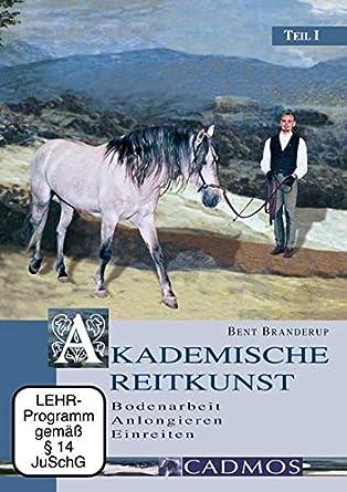 Akademische Reitkunst Band 1-4 Bodenarbeit//Einreiten//Longenarbeit Branderup