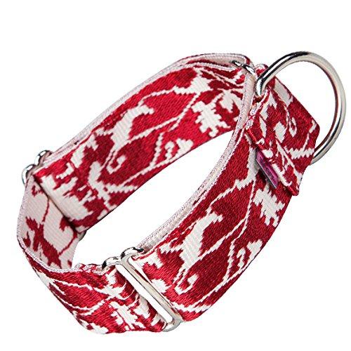 Collar Educativo Rojo para Galgos