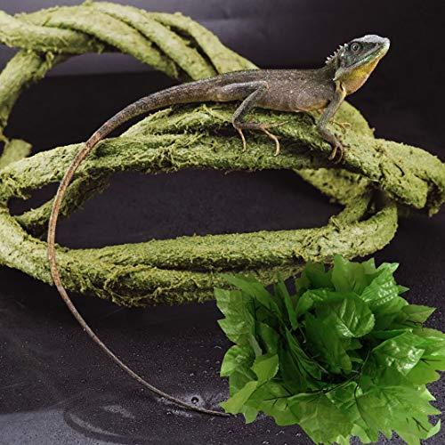 KERUIDENG Solid Bendable Reptile Vines Decor for Climbing,Flexible Bend Jungle Vines Pet Habitat Decor Plant for Gecko Chameleon Climbing Lizards Snakes and More Reptiles (6.6ft Long)