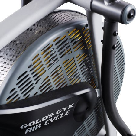 512l30orwJL - Gold's Gym Air Cycle