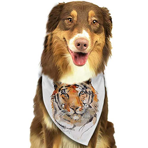 Colored pet Scarf Tiger Feline Animal with Calming Stare Hand Drawn Watercolor Art Exotic Wildcat Hunter W27.5 xL12 Scarf for Small and Medium Dogs and Cats ()