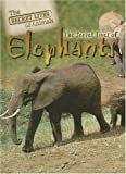 img - for The Secret Lives of Elephants (Secret Lives of Animals) book / textbook / text book