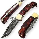 Dollar Wood 6.5'' 100% Handmade Damascus Steel Folding Pocket Knife 100% Prime Quality Back Lock