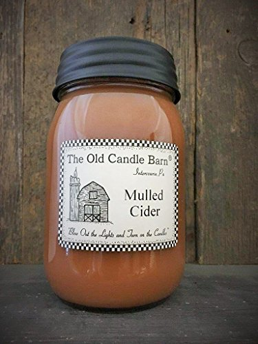Mulled Cider 16 Oz Jar Candle - Made in the USA - Blow out The Light And Turn On The Candles!