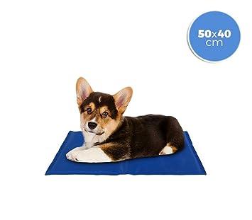 MEDIA WAVE store ® 37102 Cojín refrigerante 40x50 cm para perros pequeños con gel refrescante: Amazon.es: Hogar