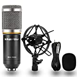 ZINGYOU BM-800 Condenser Microphone, Cardioid Studio Recording Microphone with Shock Mount, XLR Cable (Silver)