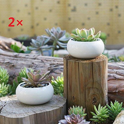 Wholesale Ceramic (Wholesale Flower Pots,Y&M(TM)Elegance House Flower Pots Indoor Ceramic Planting Vase for Succulent and Cactus Plants with Bamboo Saucer(two pots))