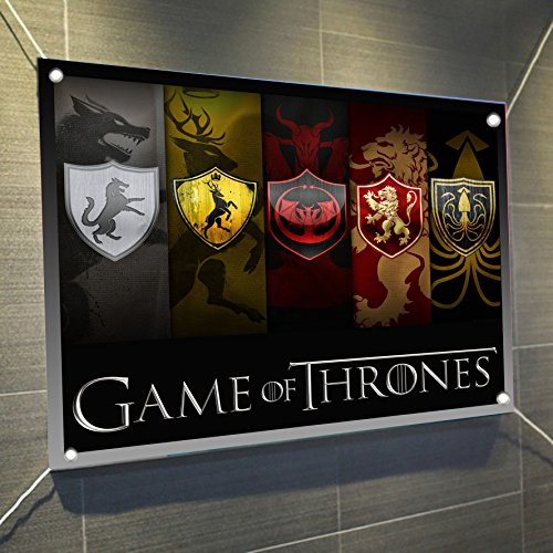 (Game of Thrones Banner Large Vinyl Indoor or Outdoor Banner Sign Poster Backdrop, party favor decoration, 30