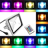 IWISHLIGHT Waterproof Outdoor Security LED Flood Light Spotlight High Powered RGB Color Change(16 Different Color Tones) with Plug and Remote Control (20 Watts)
