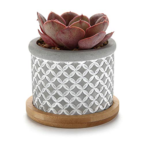 (T4U 2.25 Inch Cement Succulent Planter Pot with Bamboo Tray Grey, Small Concrete Cactus Plant Pot Indoor Herb Window Box Container for Home and Office Decoration Birthday Wedding Christmas Gift)