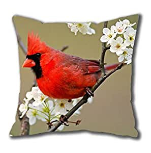 Cute Cardinal Playing on The Tree Square Pillow Case Cotton You Perfect Ideas