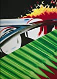 img - for James Rosenquist: Welcome to the Water Planet and House of Fire book / textbook / text book