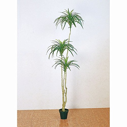 MAGIQ 東京堂 上質な 造花 ユッカプラント ×6 GREEN FG011544 B00L3UEZK2 ×6