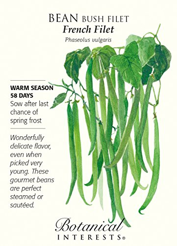 French Filet Bush Bean Seeds - 20 grams by Hirts: Seed; Vegetable