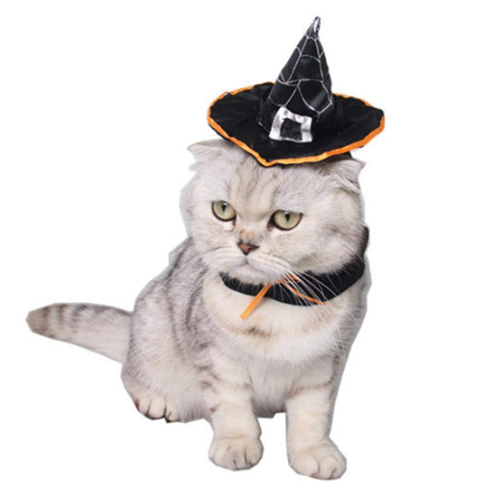 YMero Pet Birthday Hat Cat Dog Party With Cake And Colorful Candles Costume Accessory For Dogs Cats Small