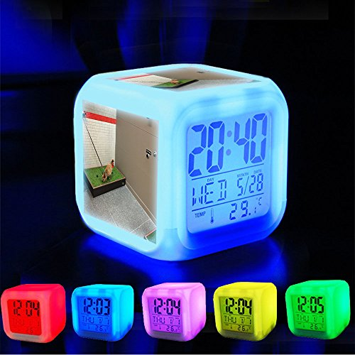 Alarm Clock 7 LED Color Changing Wake Up Bedroom with Data and Temperature Display (Changable Color) Customize the pattern-340.O'hare airport indoor pet relief area by dane - Airport Stores Ohare