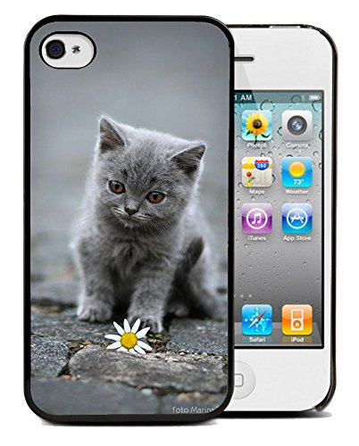 Coque silicone BUMPER souple IPHONE 5c - Chat cat animal adorable minion motif 3 DESIGN case+ Film de protection OFFERT