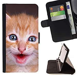 Momo Phone Case / Flip Funda de Cuero Case Cover - Gatito americano de pelo corto para mascotas lindo; - Apple Iphone 6 PLUS 5.5