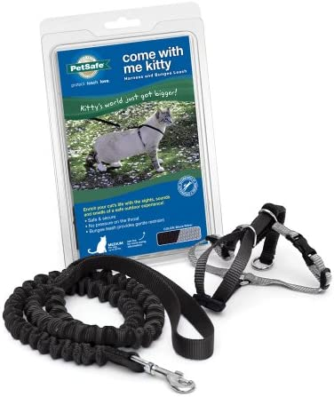 PetSafe CWMK-L-BLK is the best Cat Harness? Our review at cattime.com uncovers all pros and cons.
