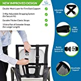 Easy Posture Lumbar Back Support Mesh