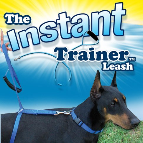 the-instant-trainer-leash-for-dogs-over-30-lbs