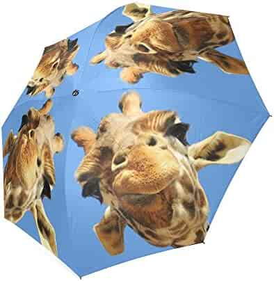 03c7a1c31b4a Shopping Under $25 - Multi or Reds - Umbrellas - Luggage & Travel ...