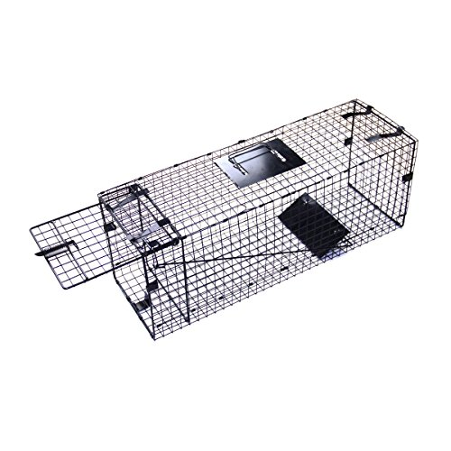 "Farmily 32""x10""x12"" Collapsible One Door Humane Live Animal Trap Catch Release for Rabbit, Skunk, Mink, and Squirrel"